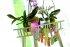 Obrázek PROSPERPLAST obal na orchideje 15478MBE