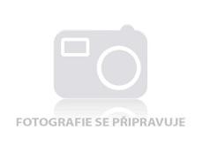 Obrázek Tontarelli Koš na prádlo s víkem Arianna 48,3L krémová 8105407210